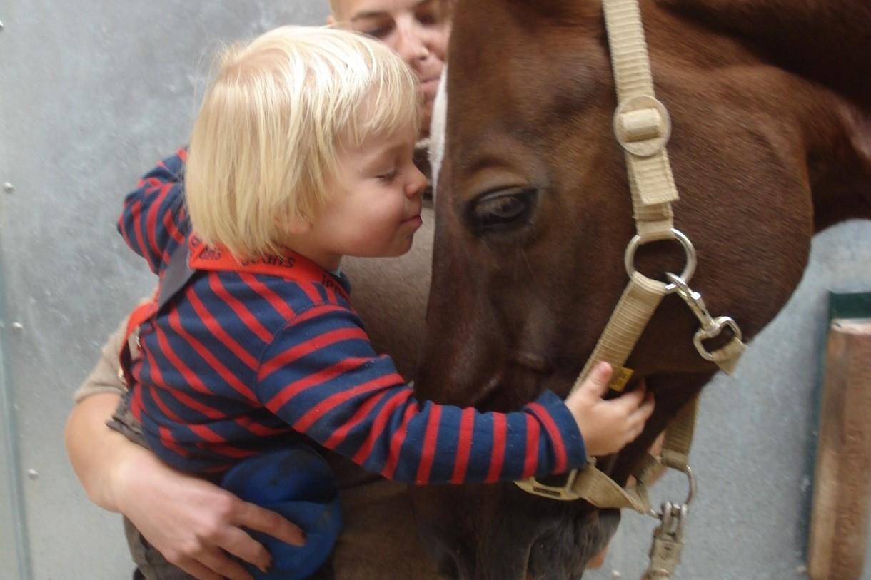 Mit Pferden aufgewachsen: Moritz stand durch seine Mama schon früh mit den Tieren in Kontakt.